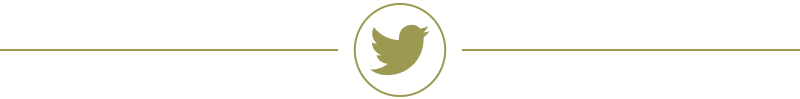 WilsonMcGuire Twitter page break