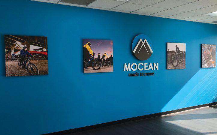 Mocean(1446x900)